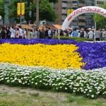 広島フラワーフェスティバル2016芸能人ゲスト ステージ最前列の取り方 ステージ場所まとめ