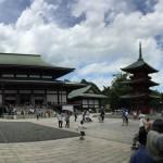 成田山へ初詣!臨時列車の時刻表と元旦に混雑を避けるルートと時間帯