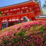 縁結びの神社 京都編 八坂神社 京都人が愛する「祇園さん」