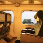 新幹線でトイレに行くとき荷物はどうする?やるべきこと3選